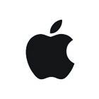apple_P